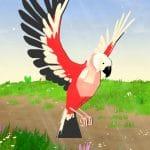 Jeu Parrot Simulator