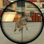 Jeu Rabbit Shooter