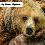 Jeu Grizzly Bear Jigsaw