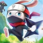 Jeu Ninja Rabbit