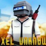 PUBG  Gunfight Pixel