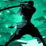 Jeu Shadow Fight